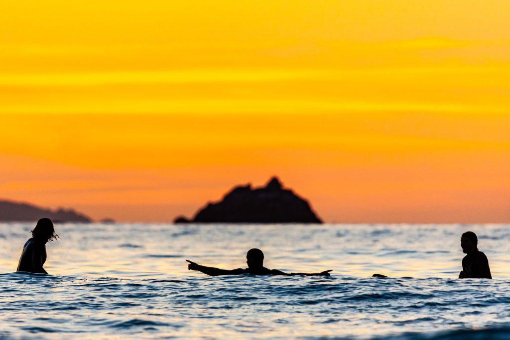 Realisation du site d'Animae Naturae Surf