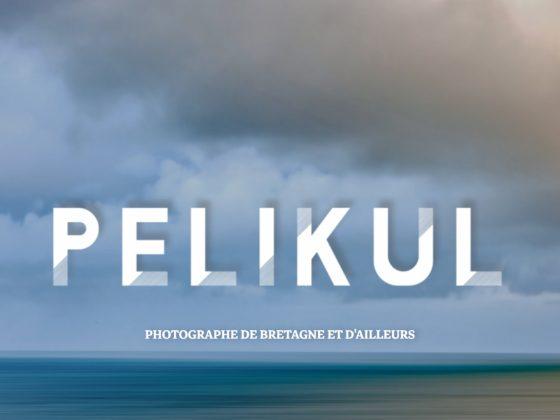l'univers de pelikul